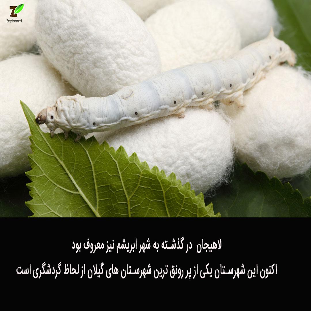 لاهیجان در قدیم معروف به شهر ابریشم