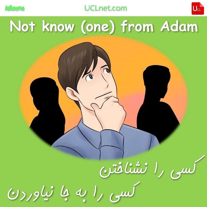 کسی را به جا نیاوردن – not know (one) from Adam – اصطلاحات زبان انگلیسی – English Idioms