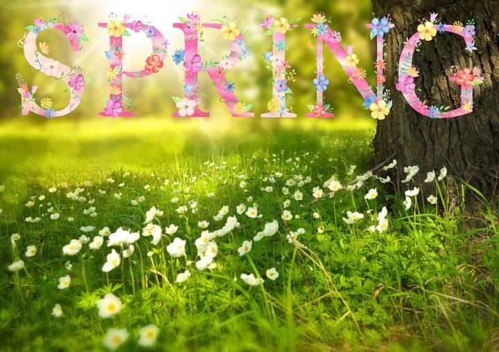 [تصویر:  spring_1210194_1280.jpg]