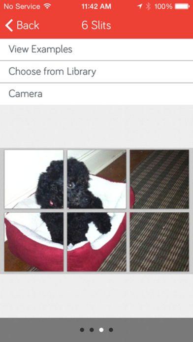 اپلیکیشن PicSlit