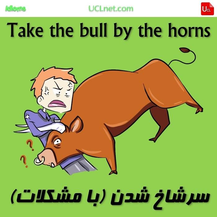 سرشاخ شدن(با مشکلات) – Take the bull by the horns – اصطلاحات زبان انگلیسی – English Idioms