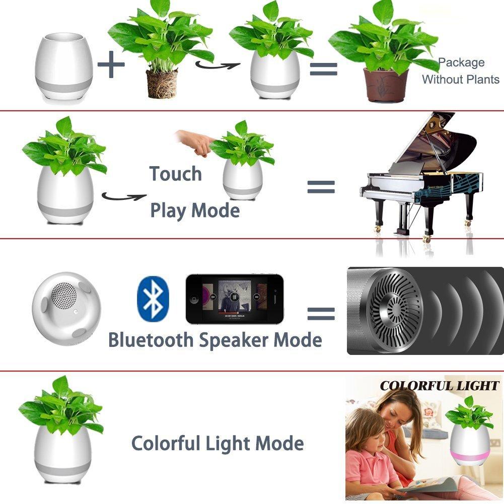 خرید اینترنتی گلدان هوشمند موزیکال
