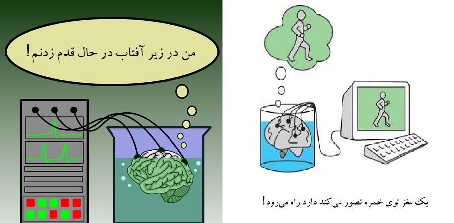 مغز در خمره