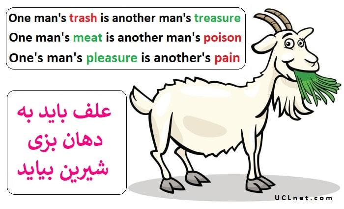 علف باید به دهان بزی شیرین بیاید – One man's trash is another man's treasure – ضرب المثل های انگلیسی – English Proverb