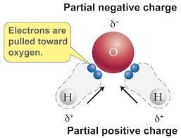 دلیل قطبی بودن مولکول آب