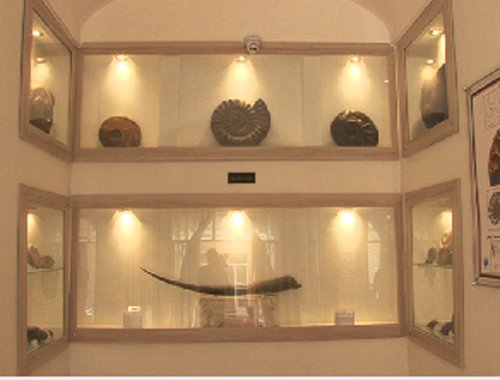 موزه دیرینه در یزد افتتاح شد
