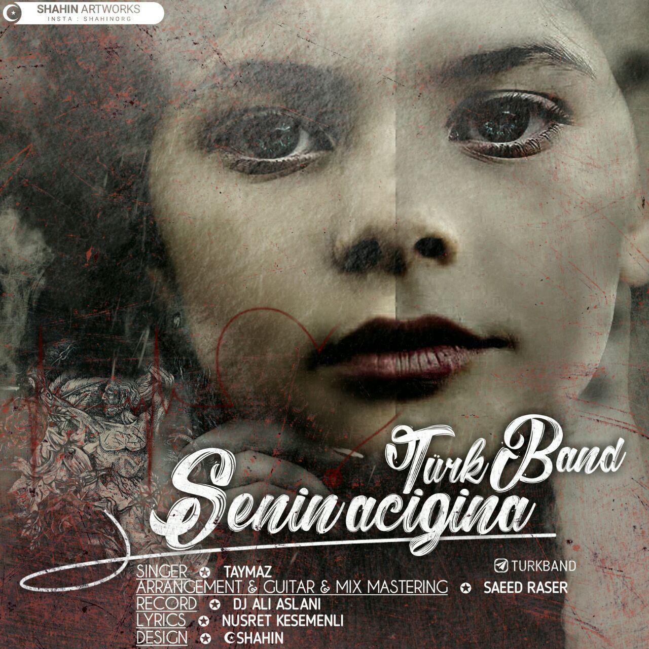 http://s9.picofile.com/file/8326902718/31Turk_Band_Senin_Acigina.jpg