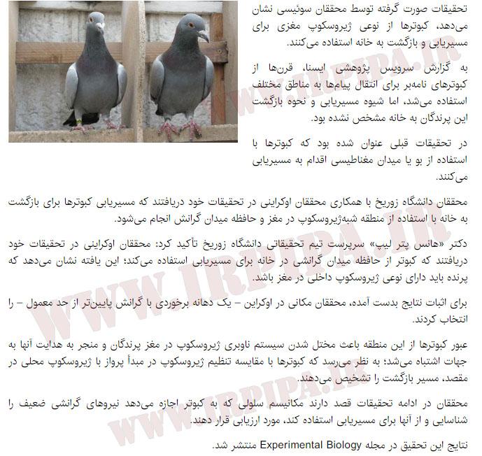 تحقیقات صورت گرفته توسط محققان سوئیسی در مورد مسی یابی کبوتران