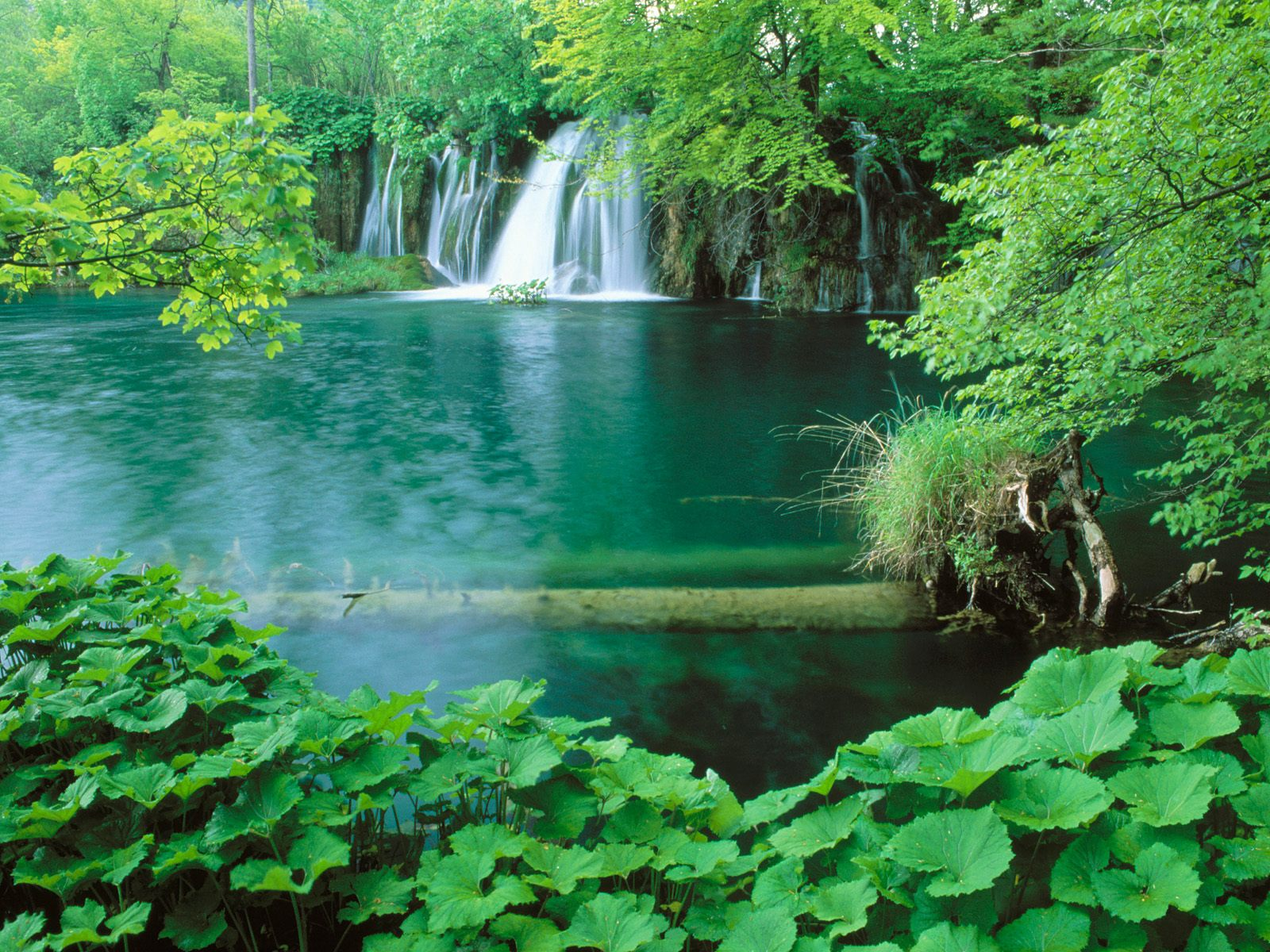 والپیر دریاچه و جنگل و آبشار