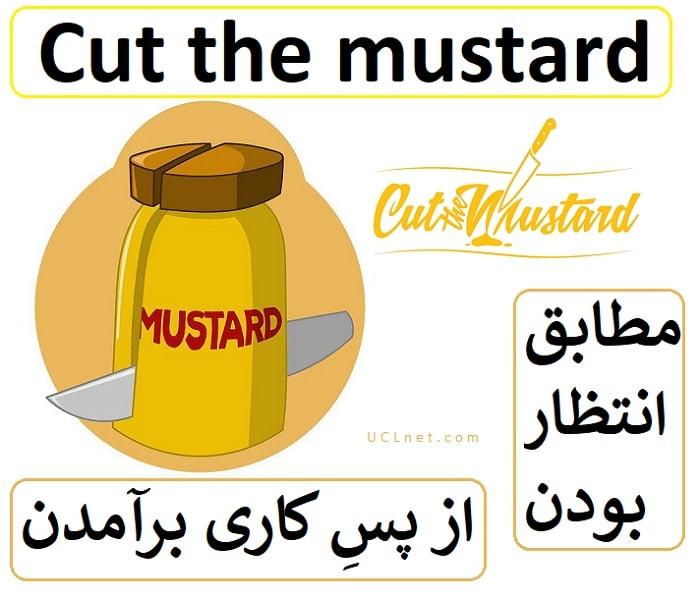 از پسِ کاری برآمدن – مطابق انتظار بودن – Cut the mustard – اصطلاحات زبان انگلیسی – English Idioms