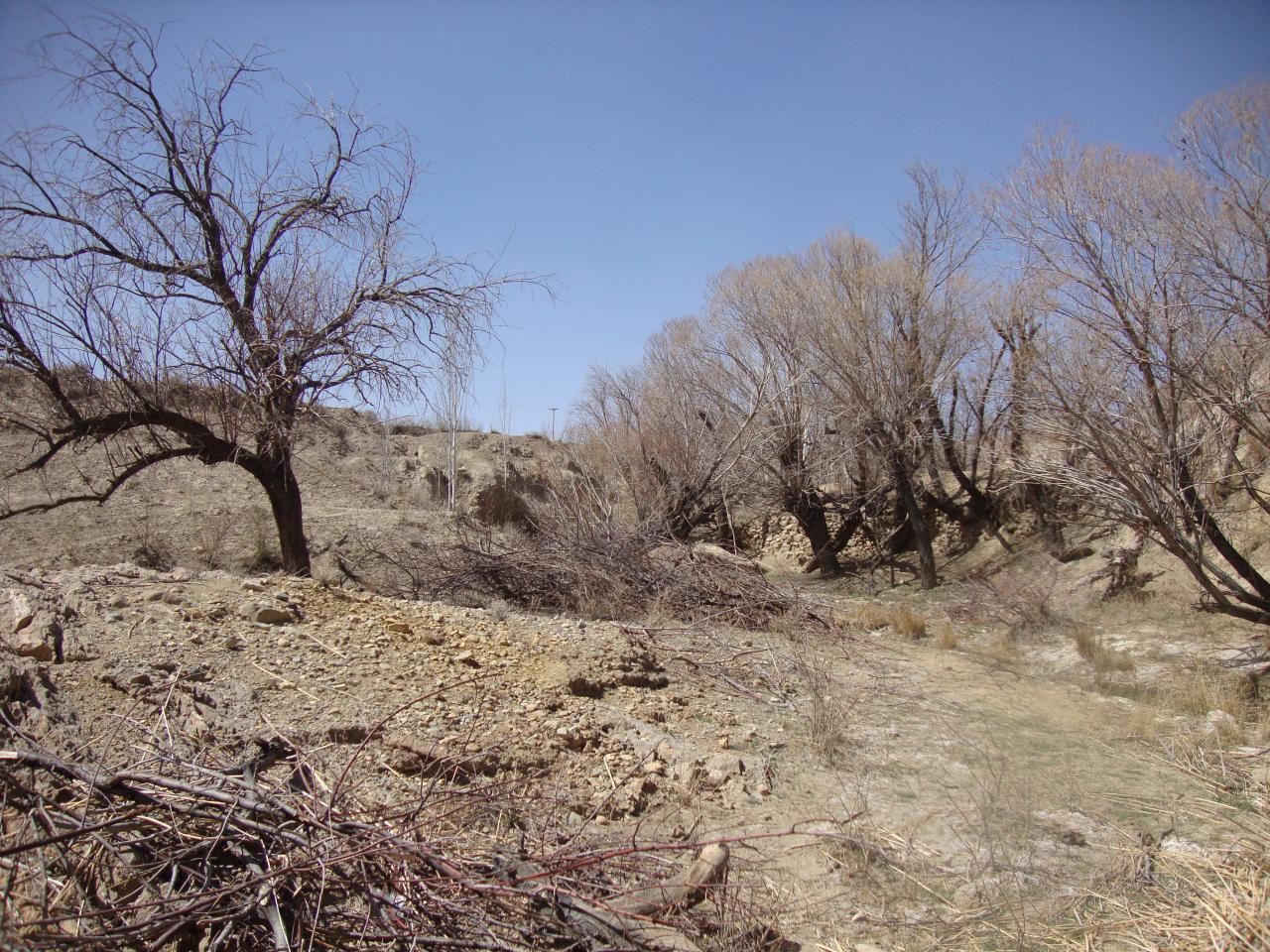 هواشناسی عید نوروز روستای بیدشک