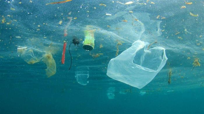32 - طرح استفاده از ضایعات پلاستیکی اقیانوسی در غرب کانادا .