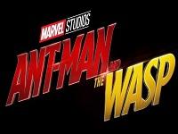 دانلود فیلم مرد مورچه ای و زنبورک - Ant-Man and the Wasp 2018