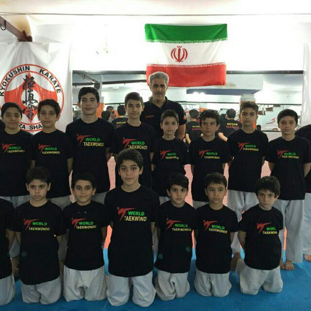 اکادمی تکواندو استاد شیرازی
