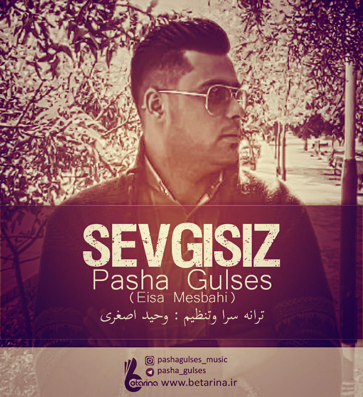 http://s9.picofile.com/file/8332037776/29Pasha_Gulses_Eisa_Mesbahi_Sevgisiz.jpg