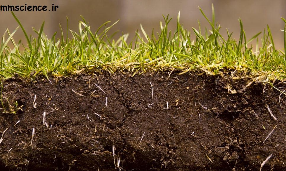 خاک و مواد مورد نیاز گیاهان