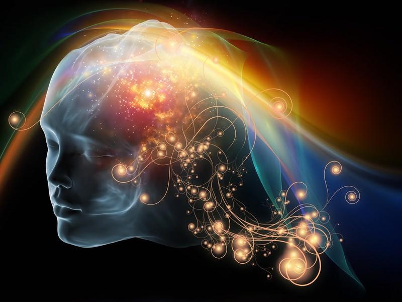 روانشناسی احساس و ادراک پاورپوینت درباره روانشناسی احساس و ادراک