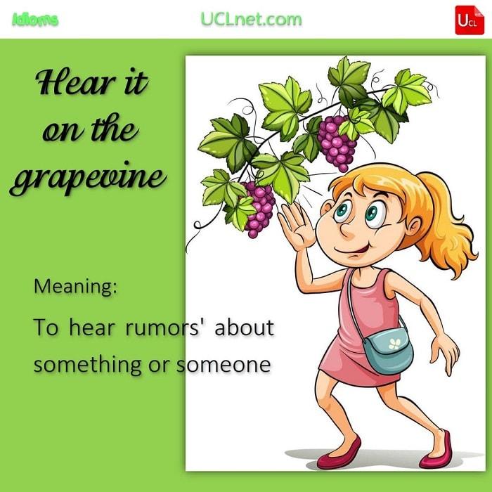 English Idiom: Hear it on the grapevine