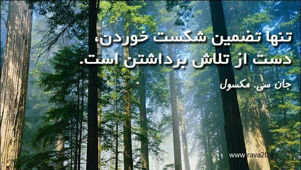 تنها تضمین شکست خوردن،دست از تلاش برداشتن است.