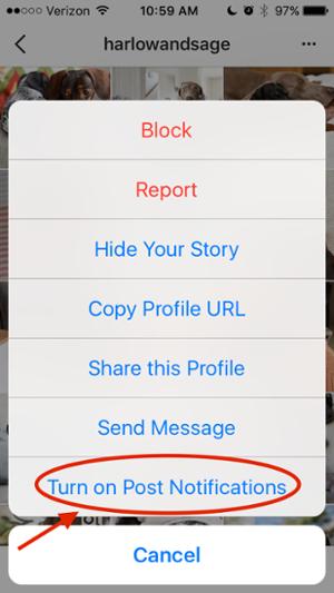 چگونگی تنظیم قابلیت اینستاگرام برای دریافت نوتیفی هنگام نشر پست توسط فرد دلخواه
