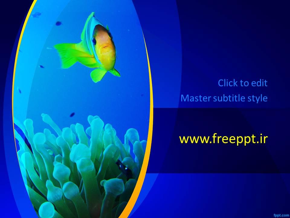 قالب پاورپوینت اکواریوم ماهی زیبا