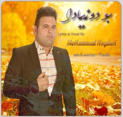 آهنگ بودونيا - محمد حيدري