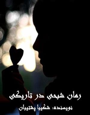 رمان شبحی در تاریکی