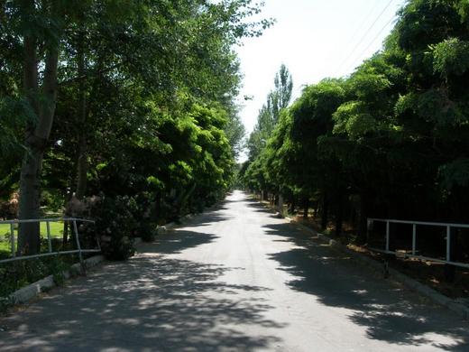 باغ خلعت پوشان