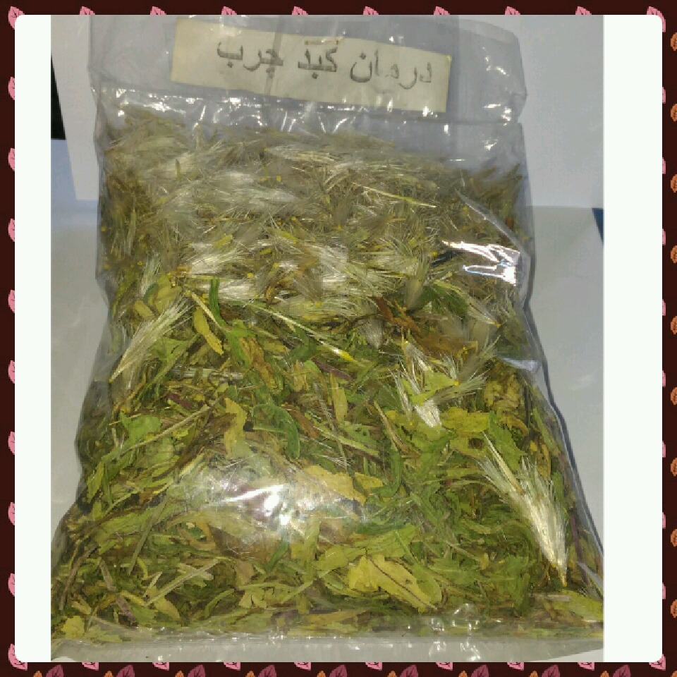 ترکیب گیاهی درمان کبد چرب