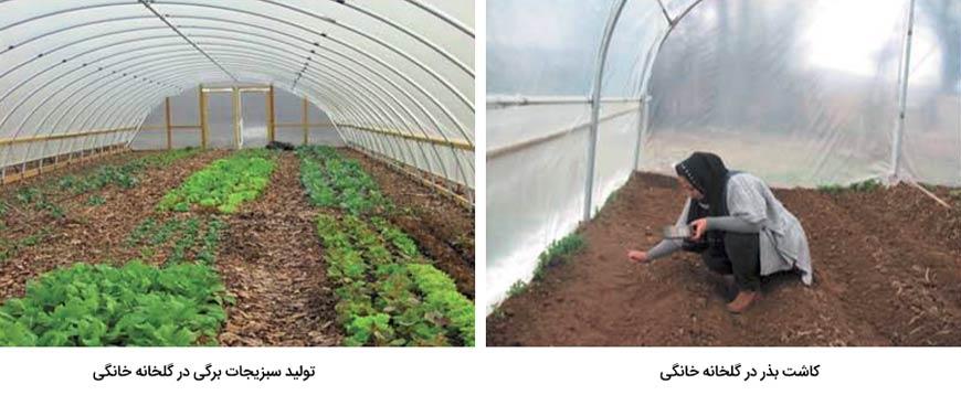 مزایای گلخانه های خانگی