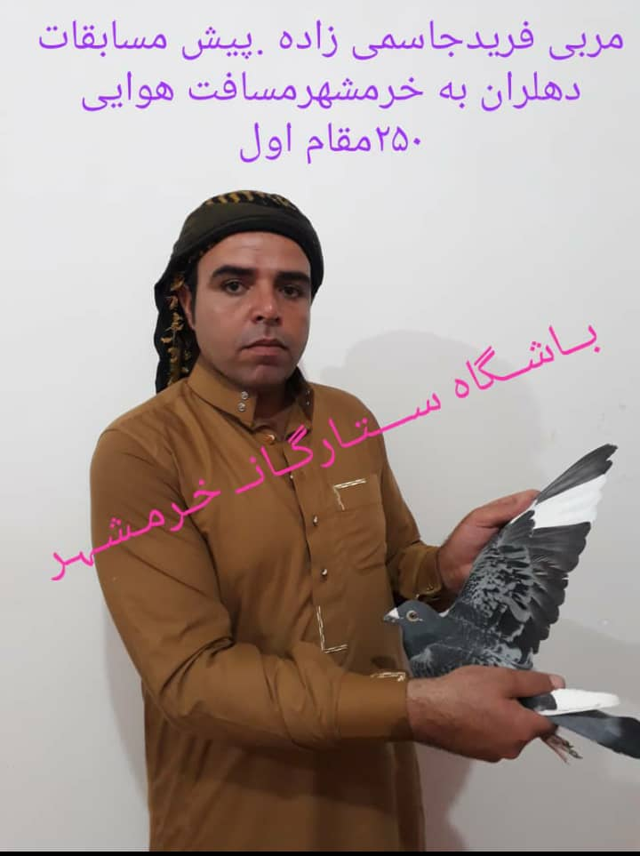 مقام داران باشگاه کبوتران مسابقه ایی ستارگان خرمشهر
