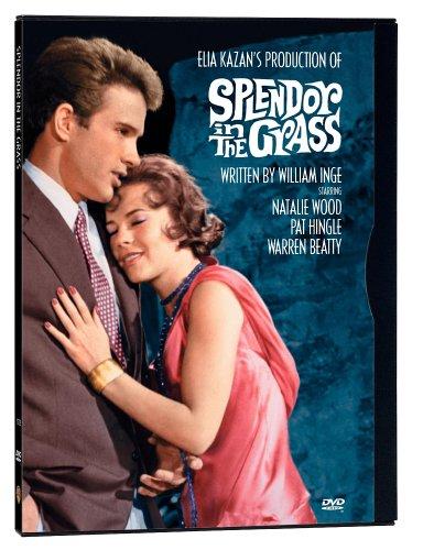 دانلود دوبله فارسی فیلم شکوه علفزار Splendor in the Grass 1961