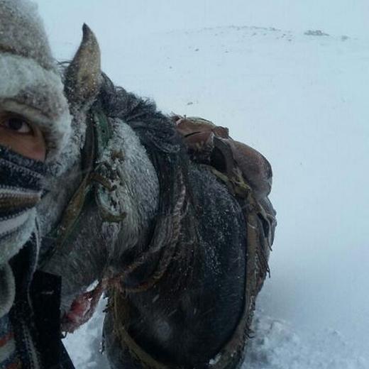 برف آذربایجان