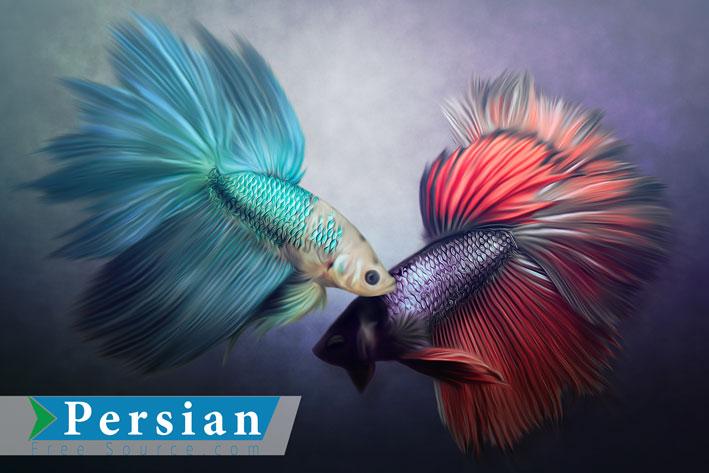 طرح نقاشی آبرنگ ماهی Watercolour Fish