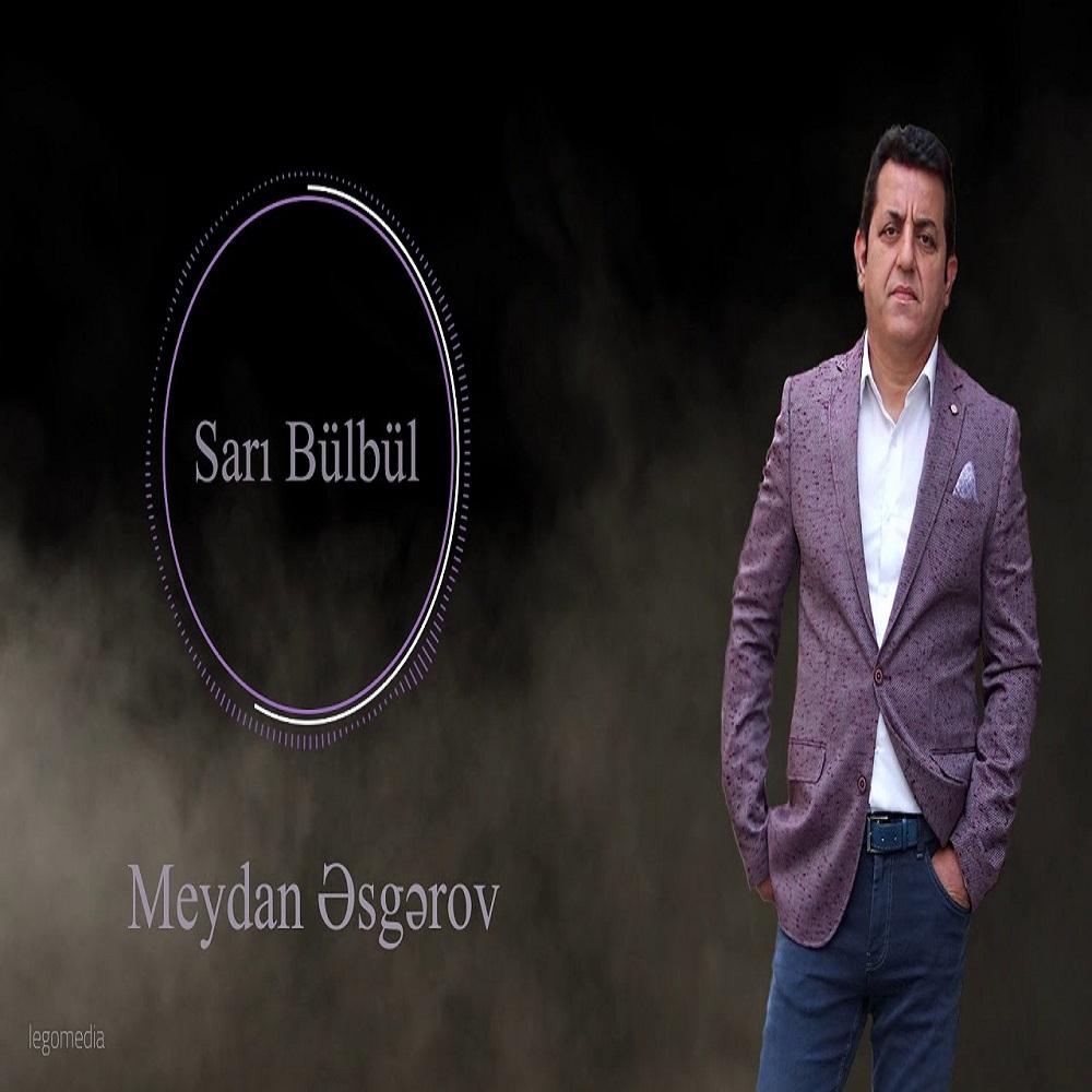 http://s9.picofile.com/file/8354838742/17Meydan_Esgerov_Sari_Bulbul.jpg