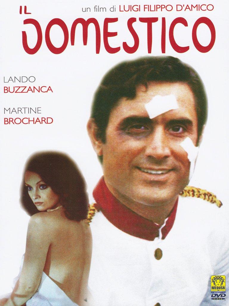 دانلود دوبله فارسی فیلم پیشخدمت Il domestico 1974