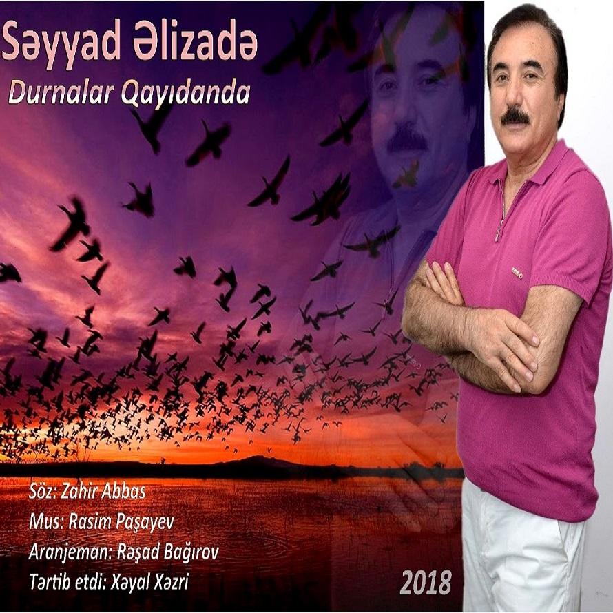 http://s9.picofile.com/file/8356836242/14Seyyad_Elizade_Durnalar_Qayidanda.jpg
