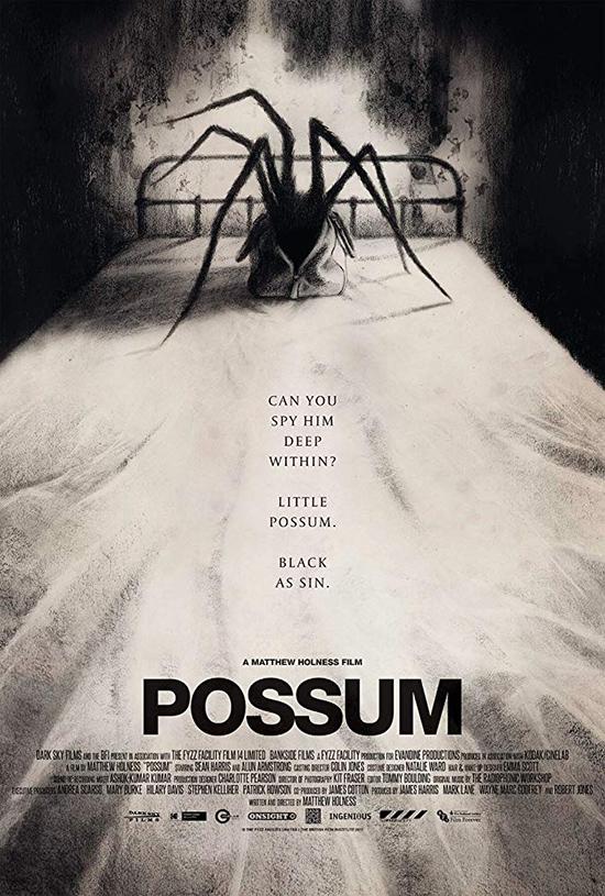 دانلود فیلم صاریغ - Possum 2018