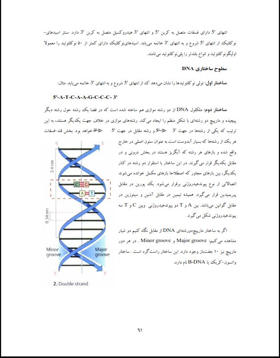دانلود جزوه کتاب بیوشیمی عمومی pdf برای رشته های علوم آزمایشگاهی ،پرستاری ، مامایی و دامپزشکی پی دی اف رایگان