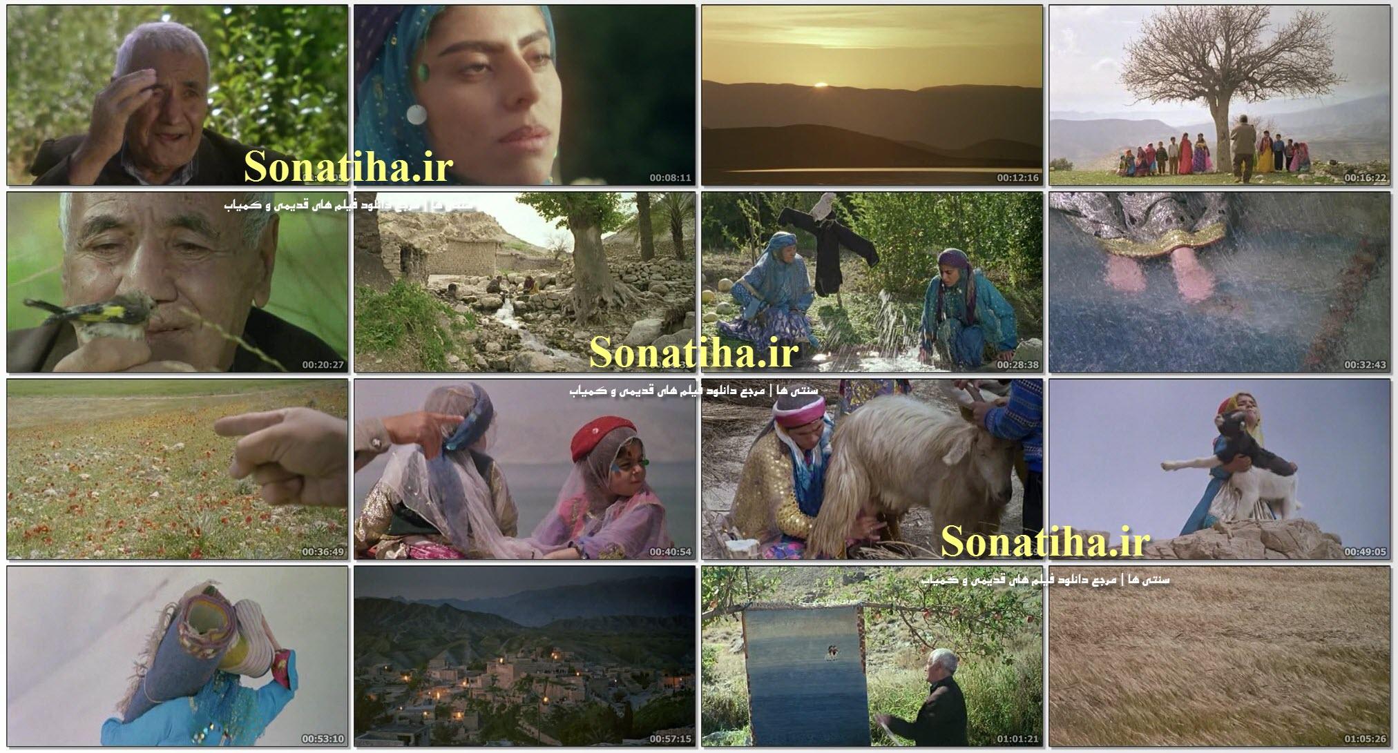 تصاویری از فیلم گبه