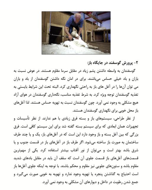 دانلود کتاب و جزوه احداث جایگاه و محل مناسب پرورش گوسفند و بز + آموزش و راهنما pdf طرح توجیهی
